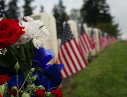 Thank You to All Our Veterans for Their  Service and Sacrifices